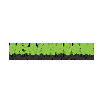 Logotipo oficial Proesporte